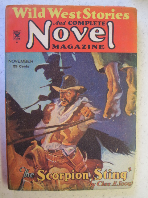 WILD WEST STORIES AND COMPLETE NOVEL MAGAZINE # 113 PULP NOV 1934