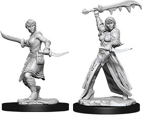 Dungeons & Dragons Nolzur`s Marvelous Unpainted Miniatures: W10 Female Human Rogue
