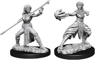 Dungeons & Dragons Nolzur`s Marvelous Unpainted Miniatures: W10 Female Half-Elf Monk