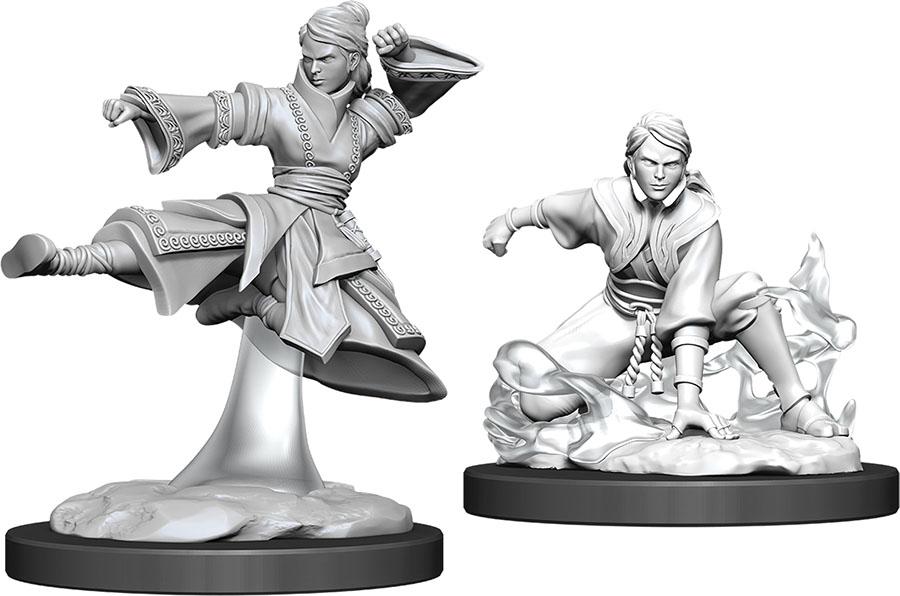 Dungeons & Dragons Nolzur`s Marvelous Unpainted Miniatures: W11 Female Human Monk